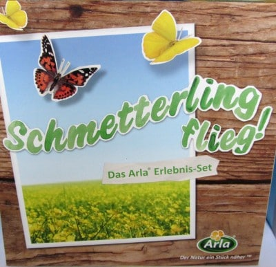 Schmetterling flieg! 1